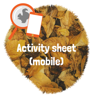 Activity sheet for mobiles, pdf
