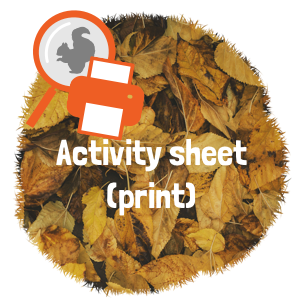 Activity sheet to print, pdf