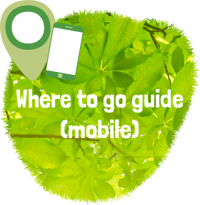 Where to go guide for mobiles, pdf