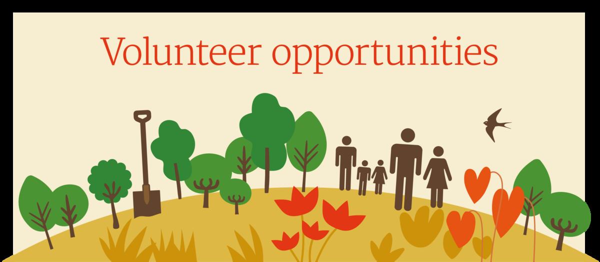 City of Trees volunteering opportunities