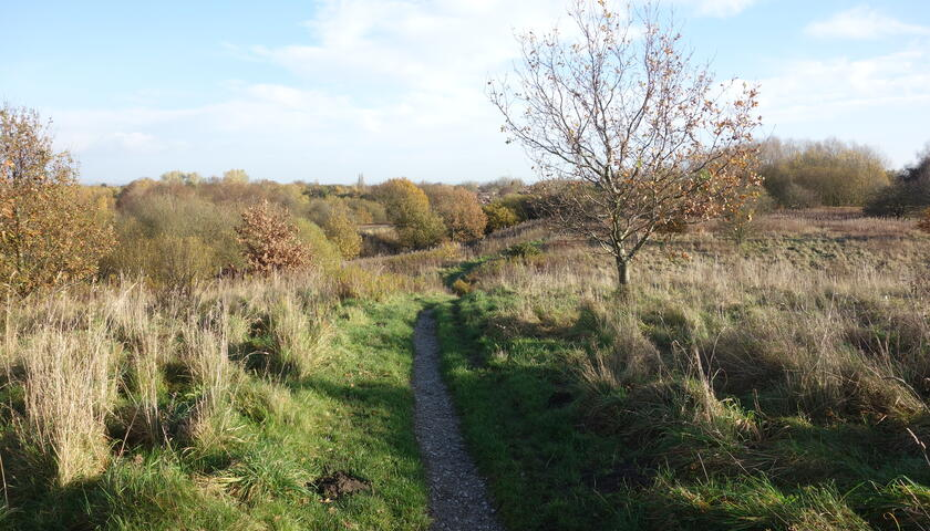 Green Hill at Wellacre Country Park